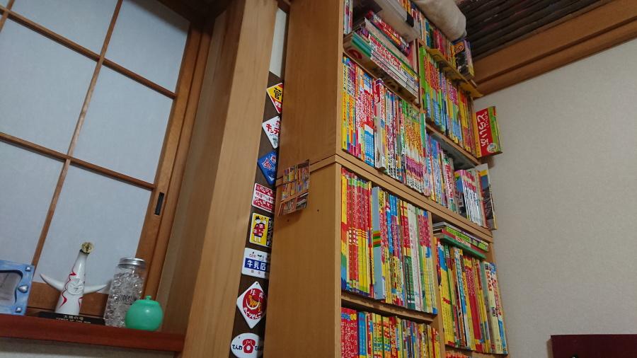 懐かしの絵本や図鑑が整理されて並ぶ棚